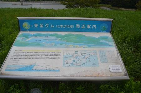 20160907東金ダム01
