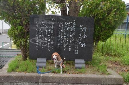 20160907公平中学校跡04