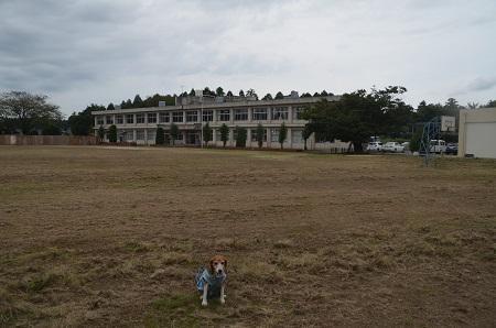 20160916駒場小学校12