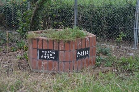 20160916上野合小学校16