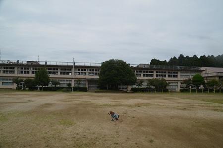 20160916沼前小学校35