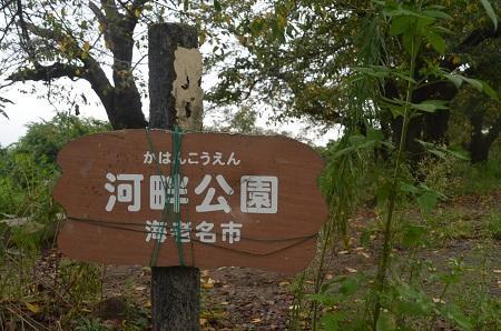 20160929相模川八景三川合流01
