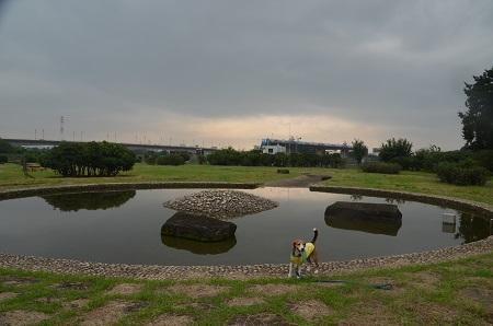 20160929相模川八景宮山の富士08