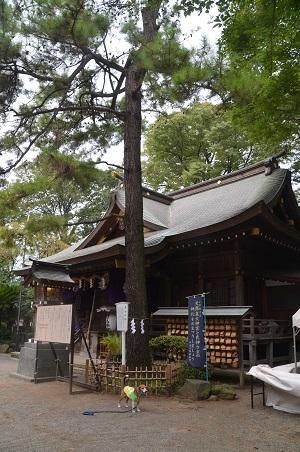 20160929平塚八景森の前鳥神社15