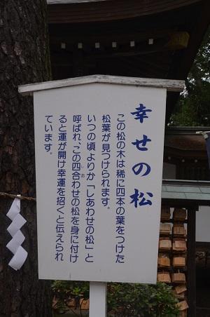 20160929平塚八景森の前鳥神社16