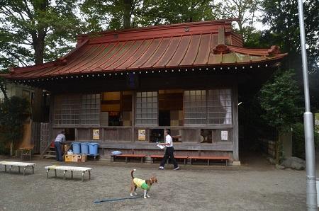 20160929平塚八景森の前鳥神社20