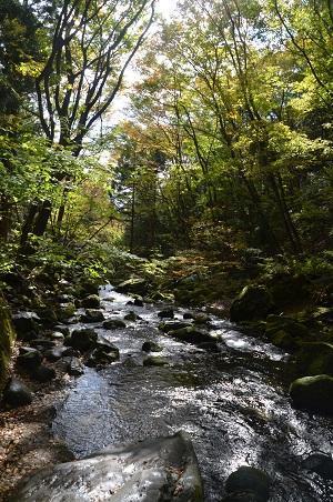 20161101乙女の滝06