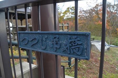 20161101つつじ吊り橋05