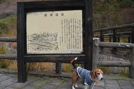 20161101殺生石05