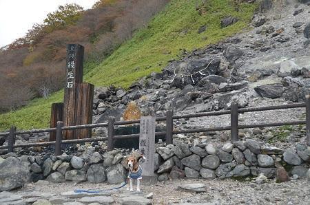 20161101殺生石14