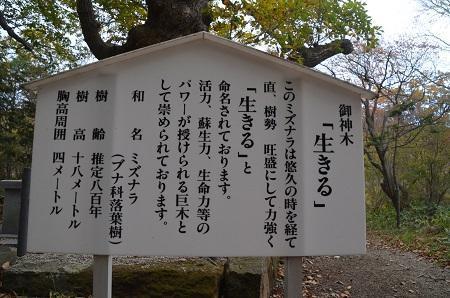 20161101温泉神社11