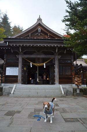 20161101温泉神社07