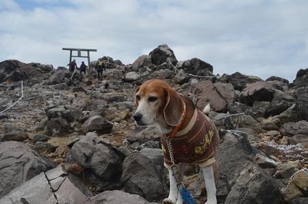 20161102那須茶臼岳32