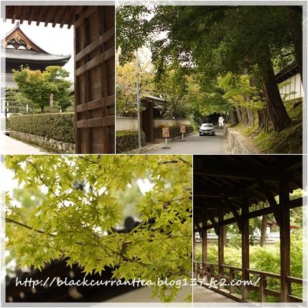 201610東福寺2
