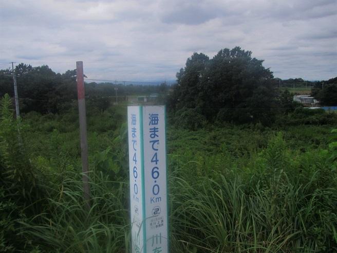 1 16.9.21 荒川土手サイクリング  (1)