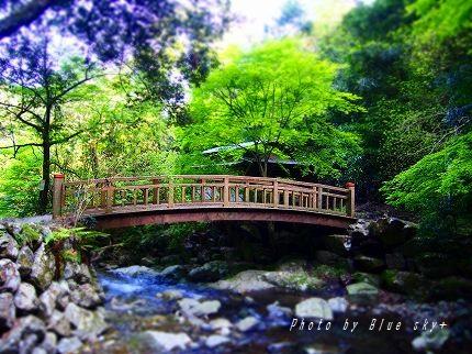 菅生キャンプ場橋
