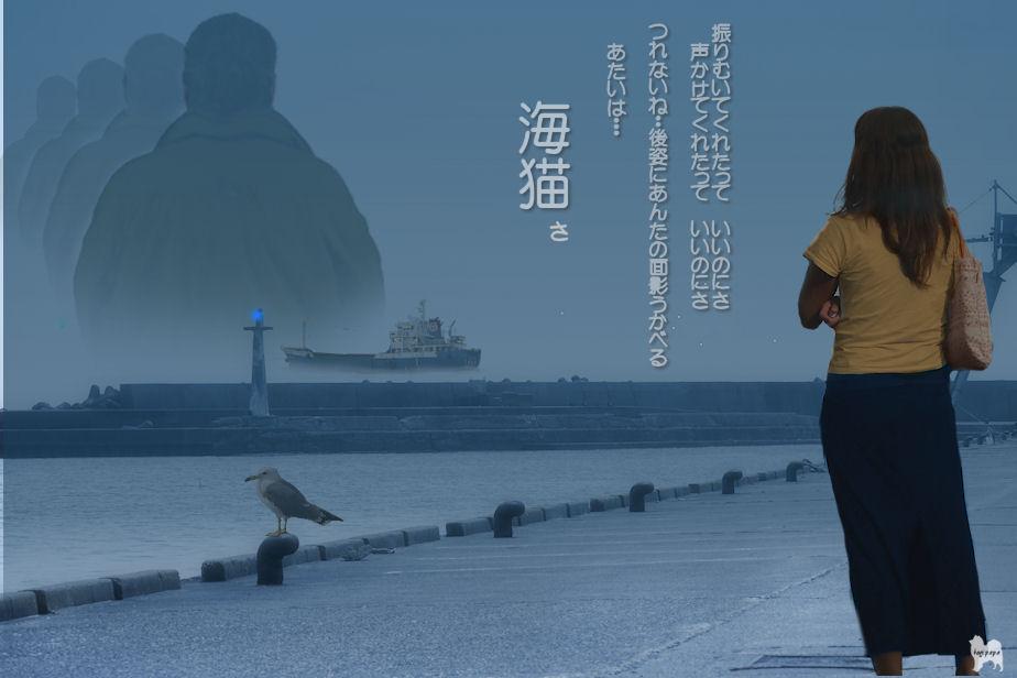海猫  合成 ♪