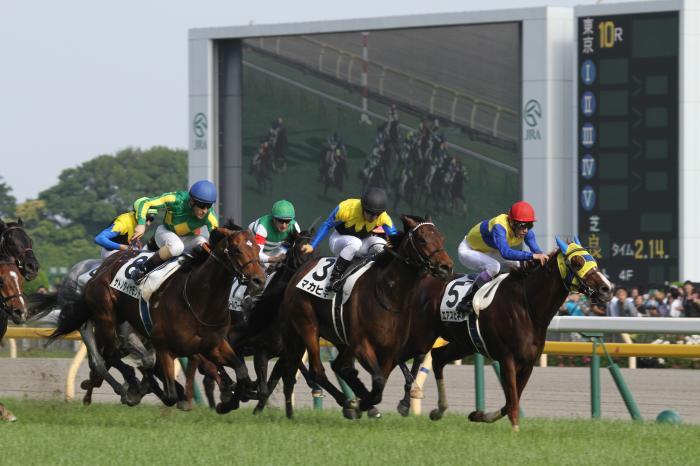 2016 日本ダービー レース2