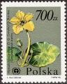 stpol2202.jpg