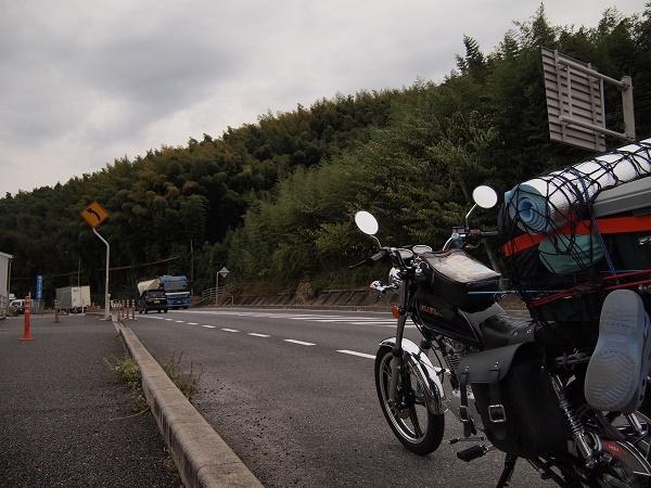 PA310011.jpg