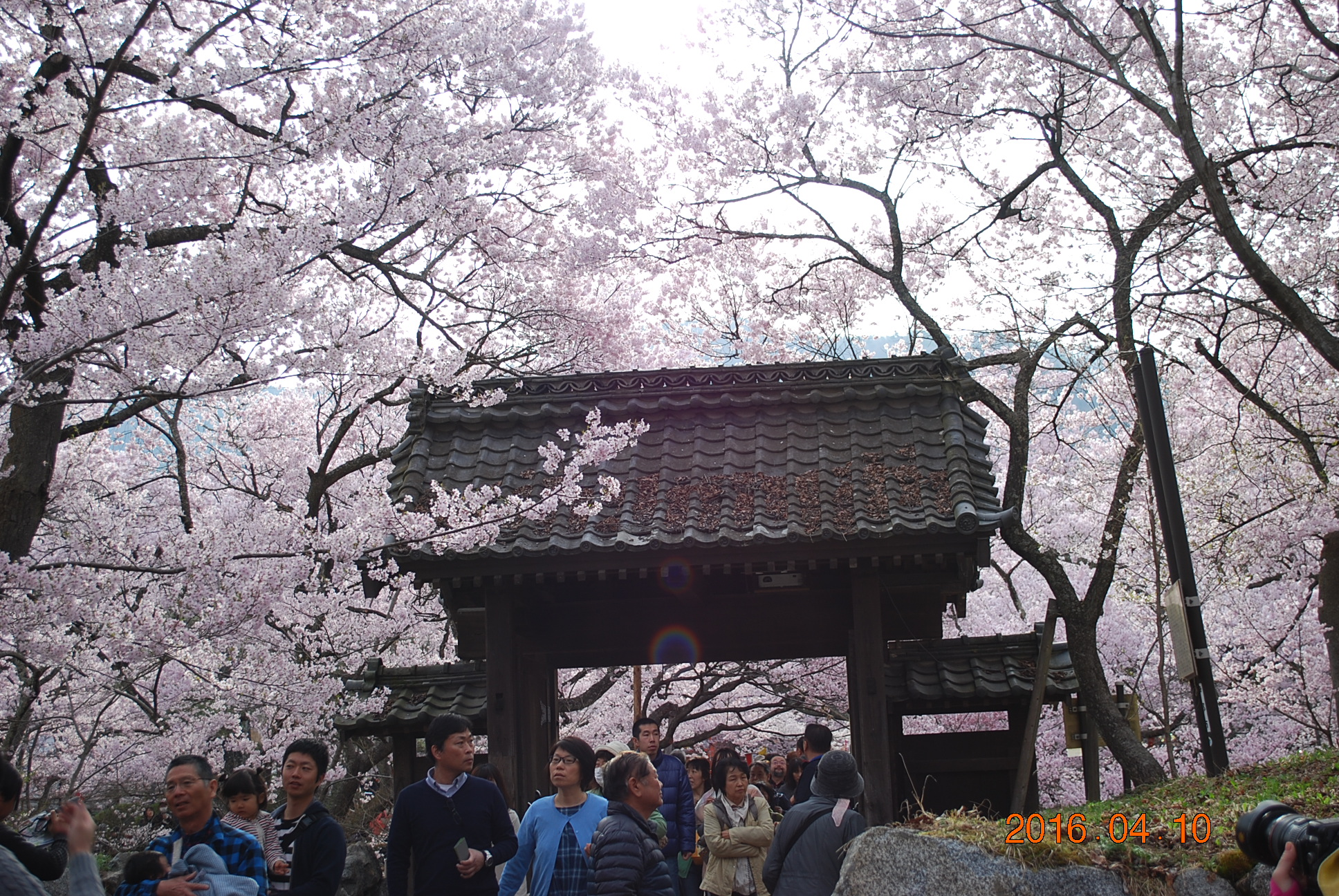 2016_0410_074129-DSC_4885.jpg