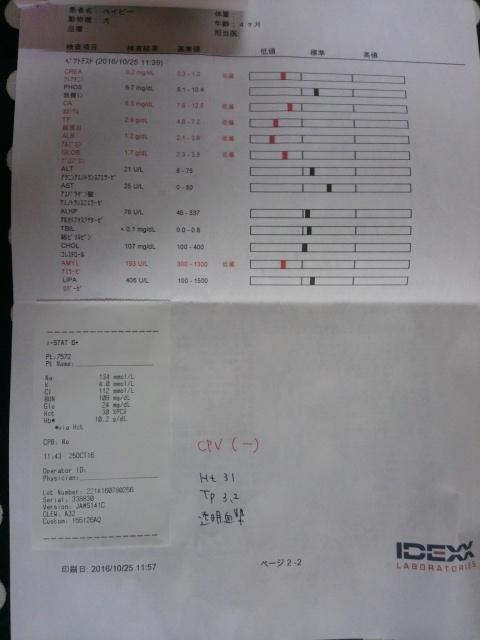 DCIM9038.jpg