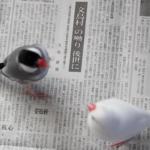 bunnchou kiji (2)