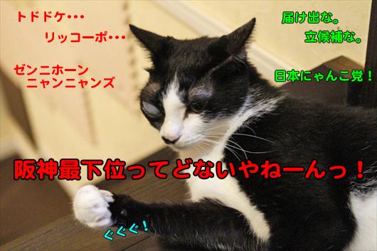 _MG_0837阪神最下位ってどないやねーんっ!