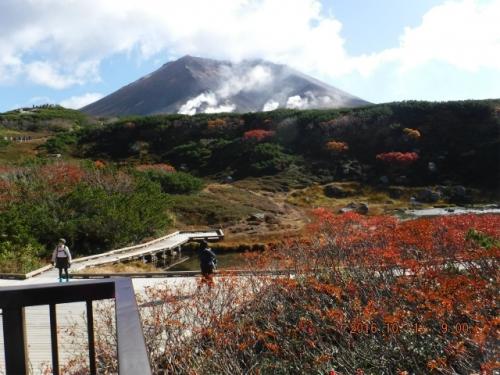 ブログ旭岳1