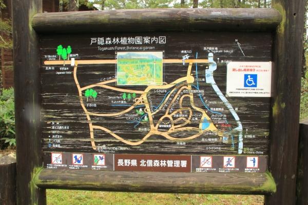 戸隠森林植物園案内図