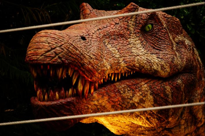 USJ 15th スピノサウルス  201605