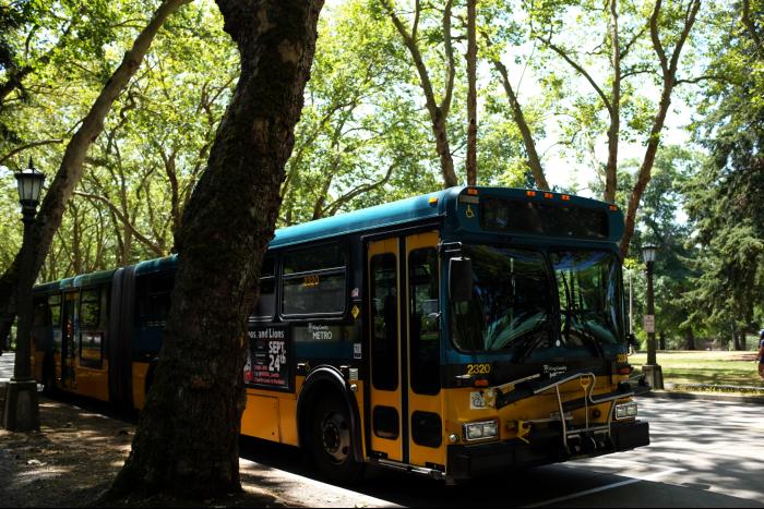シアトル ワシントン大学 街路樹 201608