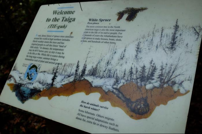 シアトル ウッドランドパーク動物園 タイガ 看板  201608