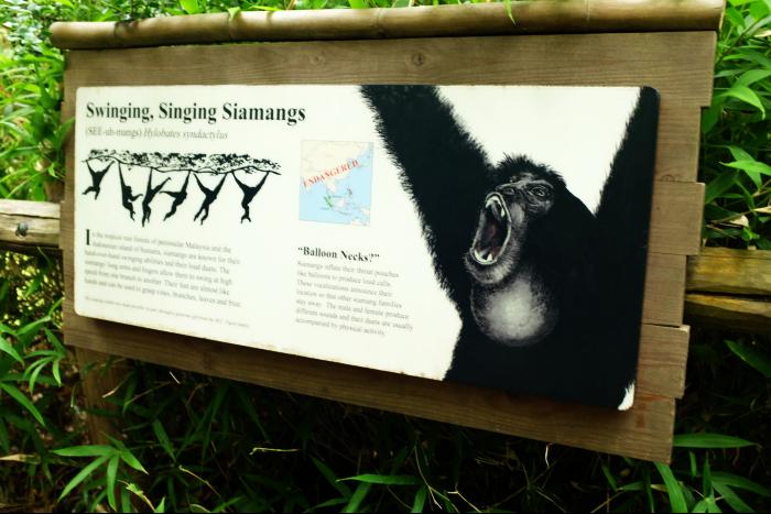 シアトル ウッドランドパーク動物園 猿の看板 201608