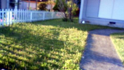 芝刈り前1