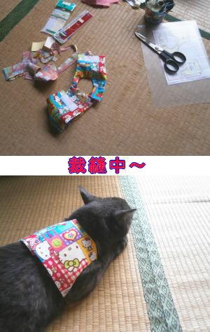 猫のベスト