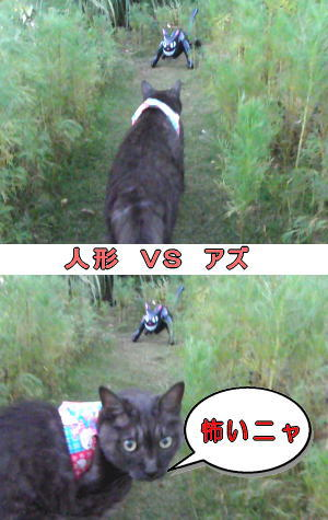 黒猫人形VS猫