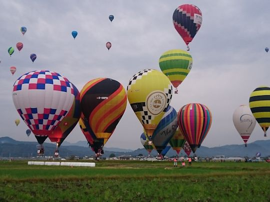 baloon16.jpg
