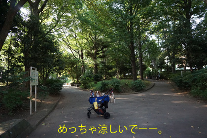 20160823 (4)