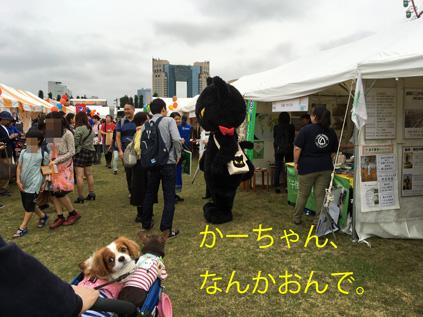 20161001 (11)