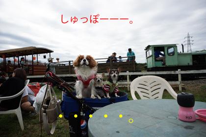 20161024 (18)