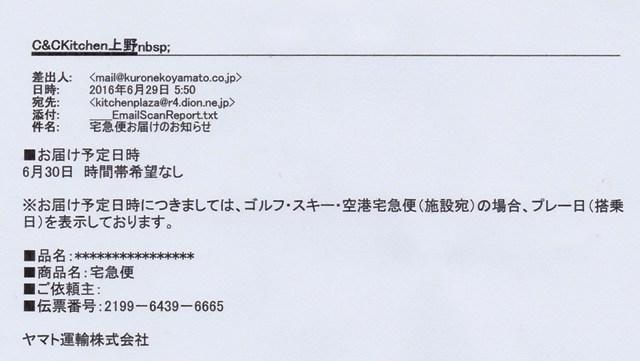 IMG_20160630_0001 (2)