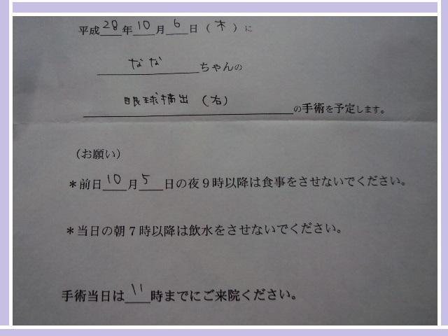 DSC07913.jpg