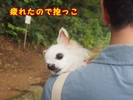 blog8320a.jpg