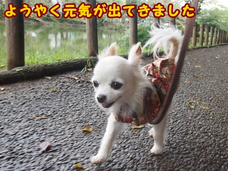 blog8322a.jpg