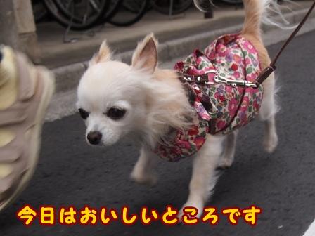 blog8446.jpg