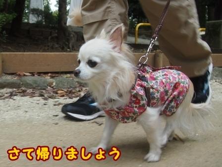 blog8462a.jpg