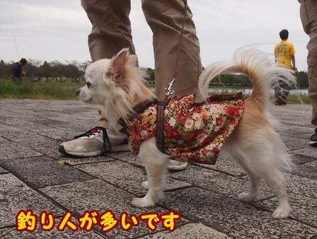 blog8467a.jpg