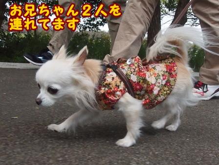 blog8468a.jpg