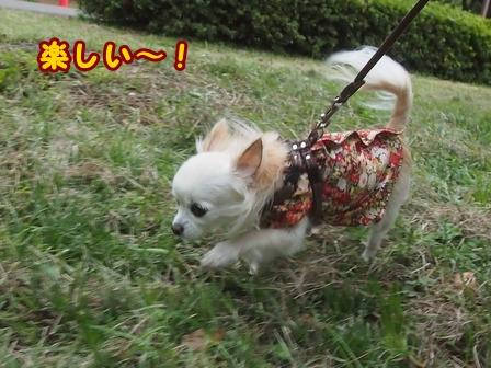 blog8479a.jpg